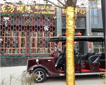 【青海】东方明珠房产采购朗逸电动老爷车