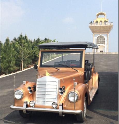 武汉藏龙岛湿地公园电动观光车选好品质 朗逸银魅款电动观光车