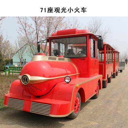 (柴油/汽油)观光小火车-无轨观光小火车
