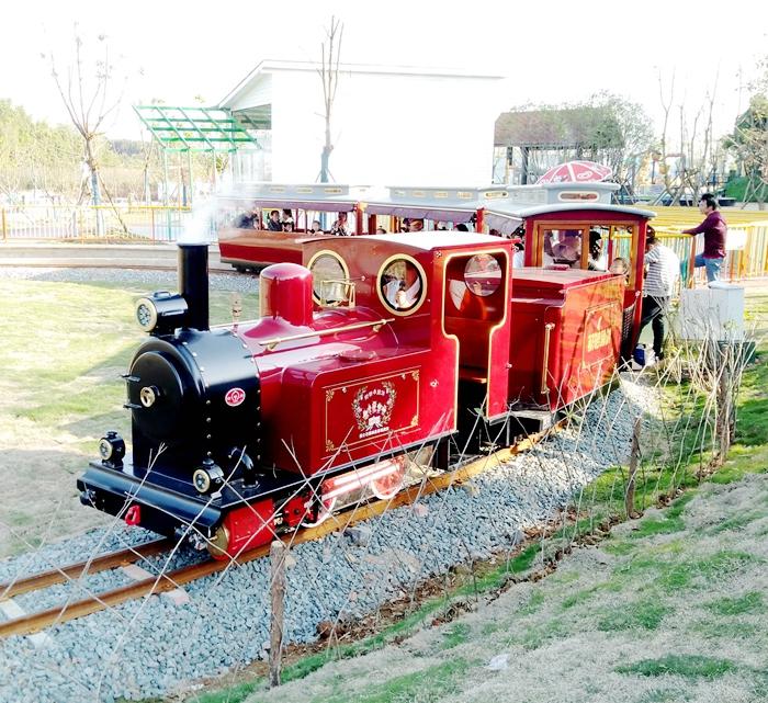36座轨道观光小火车
